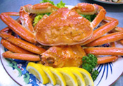 海鮮単品料理